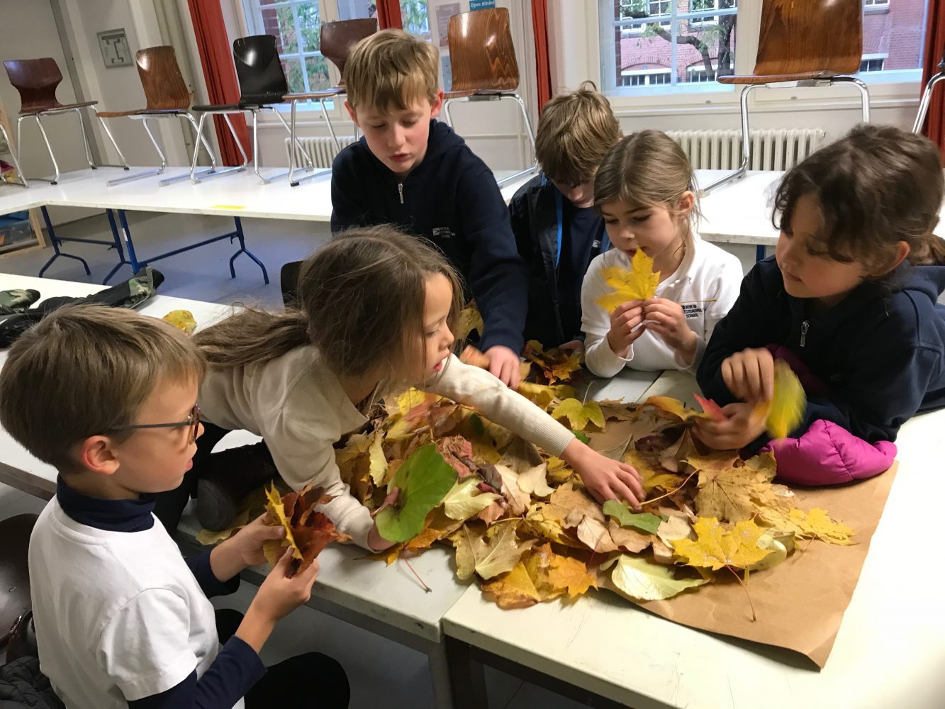 Berlin Cosmopolitan School_Clubs_extracurricular programme