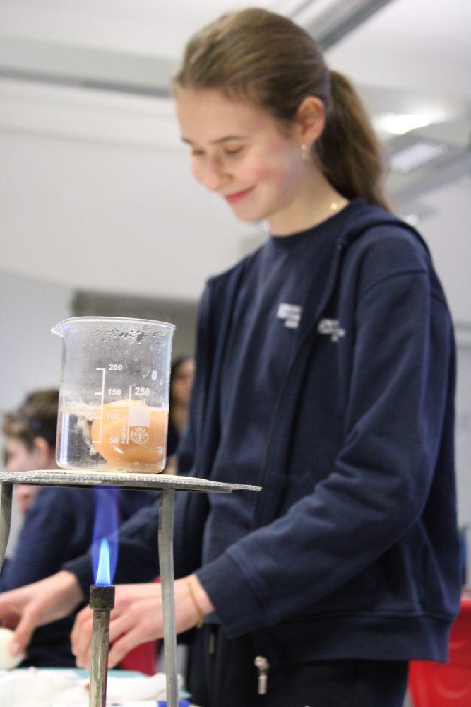 Berlin Cosmopolitan School_Naturwissenschaften_Science_Gymnasium_Secondary